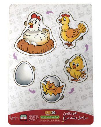 جورچین (پازل) مراحل رشد مرغ