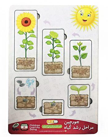 جورچین (پازل) مراحل رشد گیاه